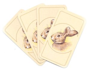 "Ravensburger ""Jugging the Hare"" cards."